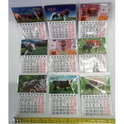 S3332 Календарь перекидной на магните Новый Год 2021 (9 х 12 см) М