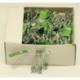 S617 Булавки №3 (432 шт. в уп.) (цена за упаковка)